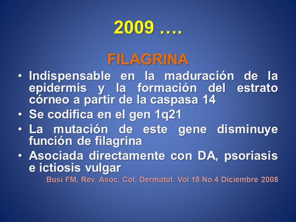 2009 …. FILAGRINA Indispensable en la maduración de la epidermis y la formación del estrato córneo a partir de la caspasa 14Indispensable en la madura