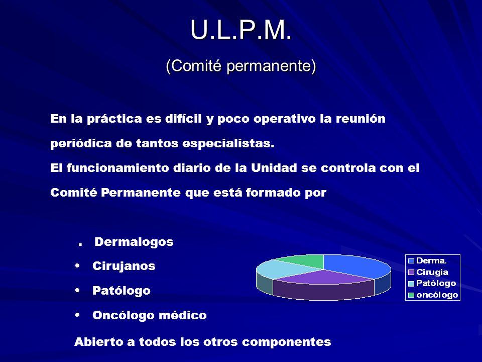 U.L.P.M. (Comité permanente) En la práctica es difícil y poco operativo la reunión periódica de tantos especialistas. El funcionamiento diario de la U