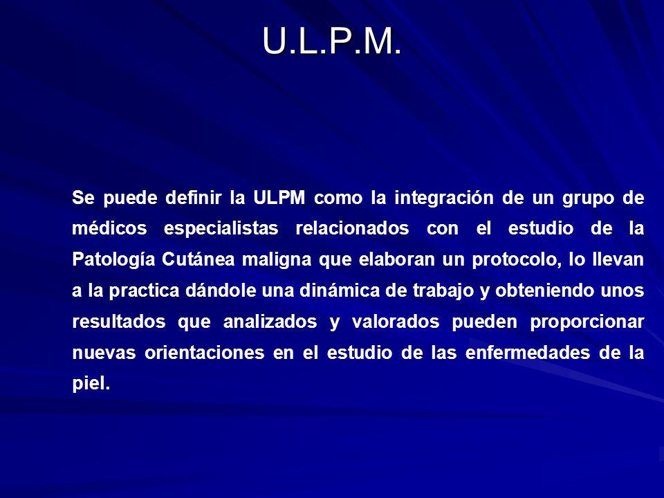 ULPM (Comité – Dinámica) Reunión Mensual: –Reunión de confección de trabajo científico, tesis doctorales Reunión de archivo, iconografía, bibliografía.