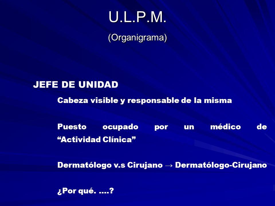U.L.P.M. (Organigrama) JEFE DE UNIDAD Cabeza visible y responsable de la misma Puesto ocupado por un médico de Actividad Clínica Dermatólogo v.s Ciruj