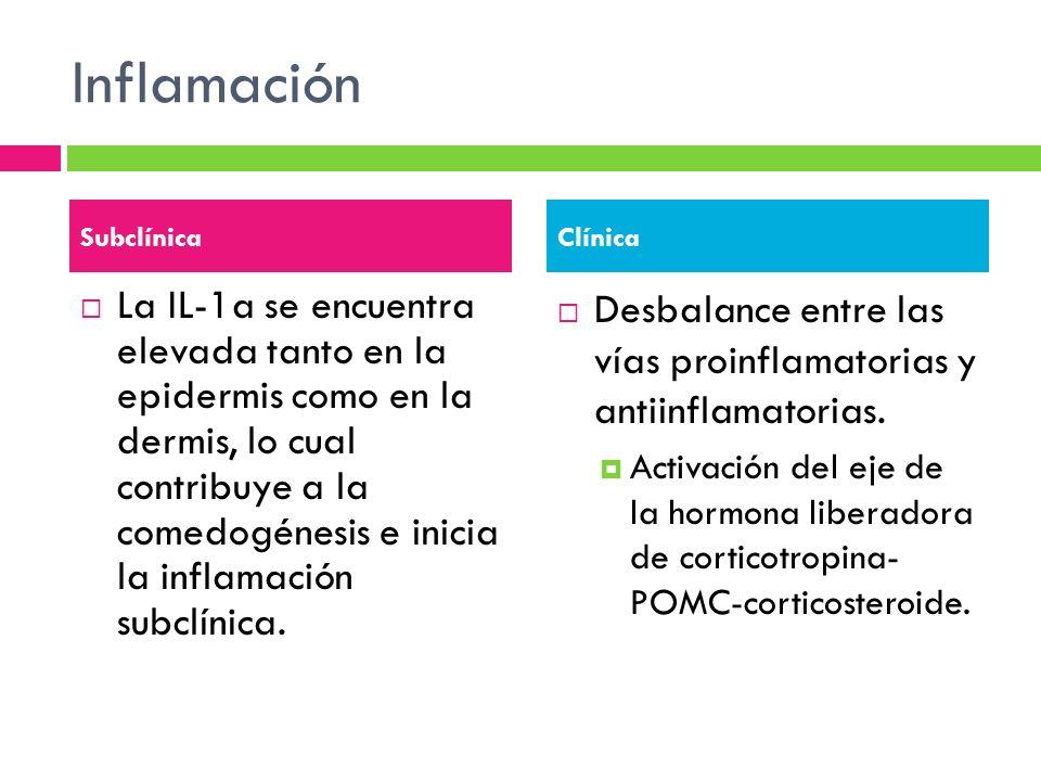 Inflamación La IL-1a se encuentra elevada tanto en la epidermis como en la dermis, lo cual contribuye a la comedogénesis e inicia la inflamación subcl