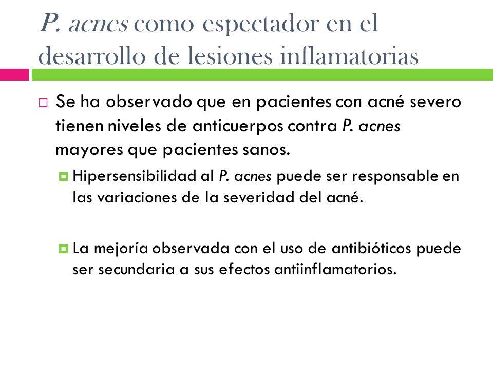 P. acnes como espectador en el desarrollo de lesiones inflamatorias Se ha observado que en pacientes con acné severo tienen niveles de anticuerpos con