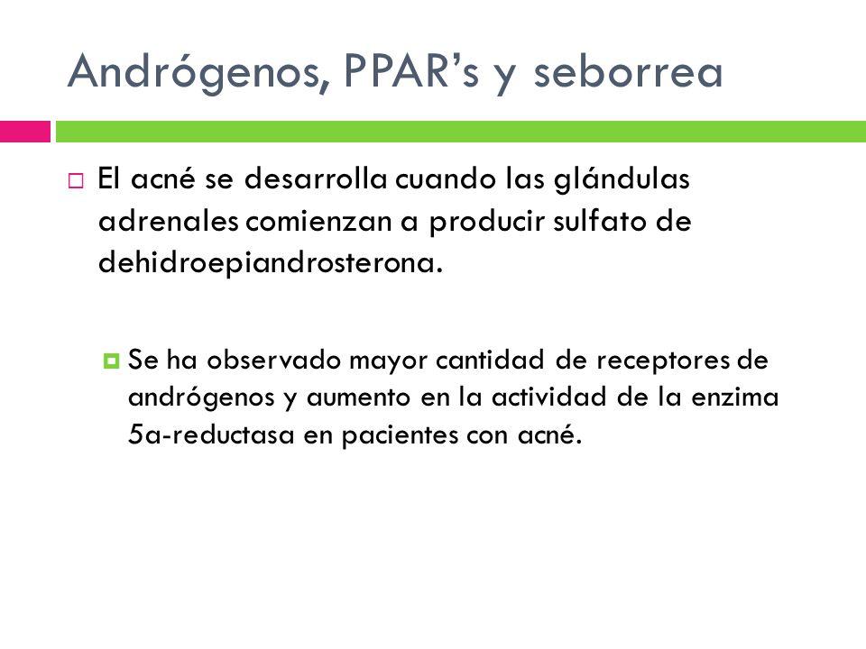 Andrógenos, PPARs y seborrea El acné se desarrolla cuando las glándulas adrenales comienzan a producir sulfato de dehidroepiandrosterona. Se ha observ