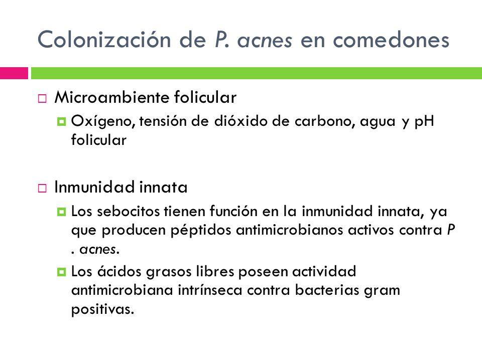 Colonización de P. acnes en comedones Microambiente folicular Oxígeno, tensión de dióxido de carbono, agua y pH folicular Inmunidad innata Los sebocit