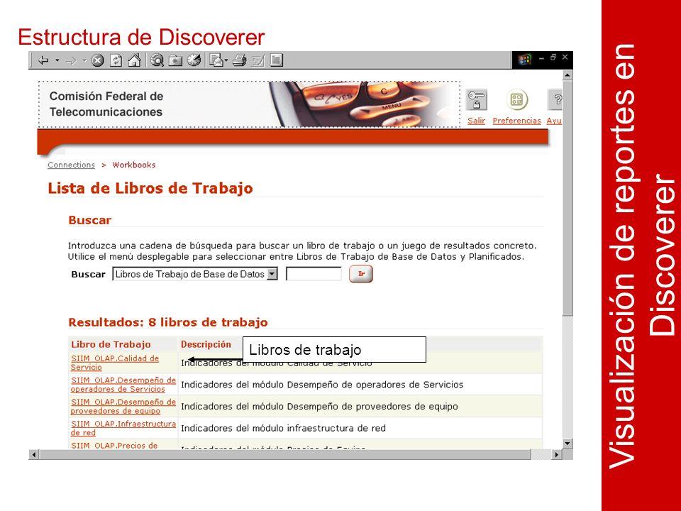 Estructura de Discoverer Visualización de reportes en Discoverer Libros de trabajo