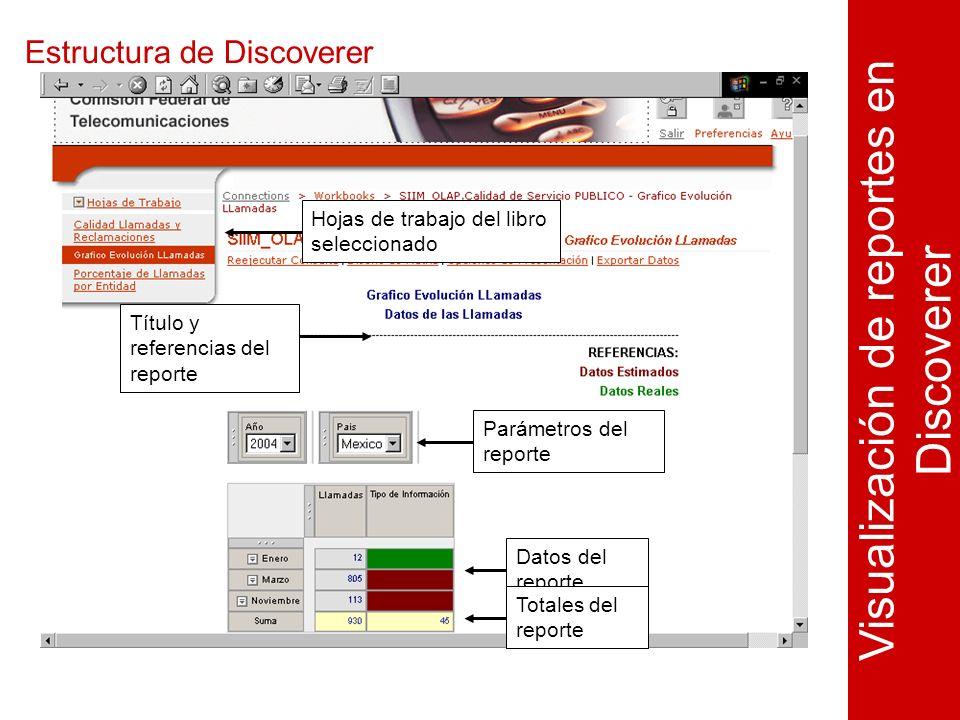 Estructura de Discoverer Visualización de reportes en Discoverer Hojas de trabajo del libro seleccionado Parámetros del reporte Datos del reporte Título y referencias del reporte Totales del reporte