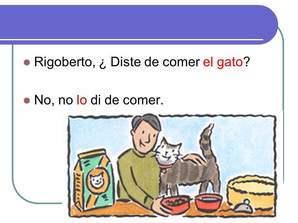Los quehaceres Rigoberto, ¿ Diste de comer el gato No, no lo di de comer.