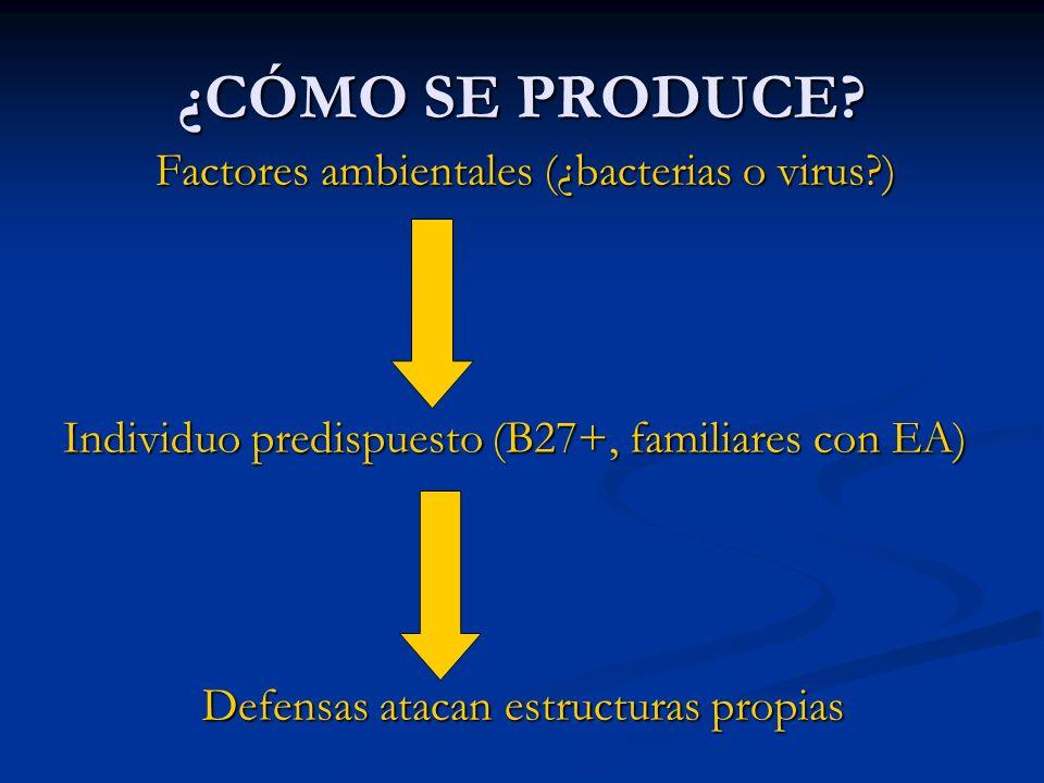INDICACIONES DE ANTI-TNF EN ESPONDILITIS Fracaso de los tratamientos previos: Fracaso de los tratamientos previos: - AINEs (mínimo 2, de entre Indometacina, Fenilbutazona y Diclofenaco), realizado a dosis plenas, correctamente, durante 3 meses.