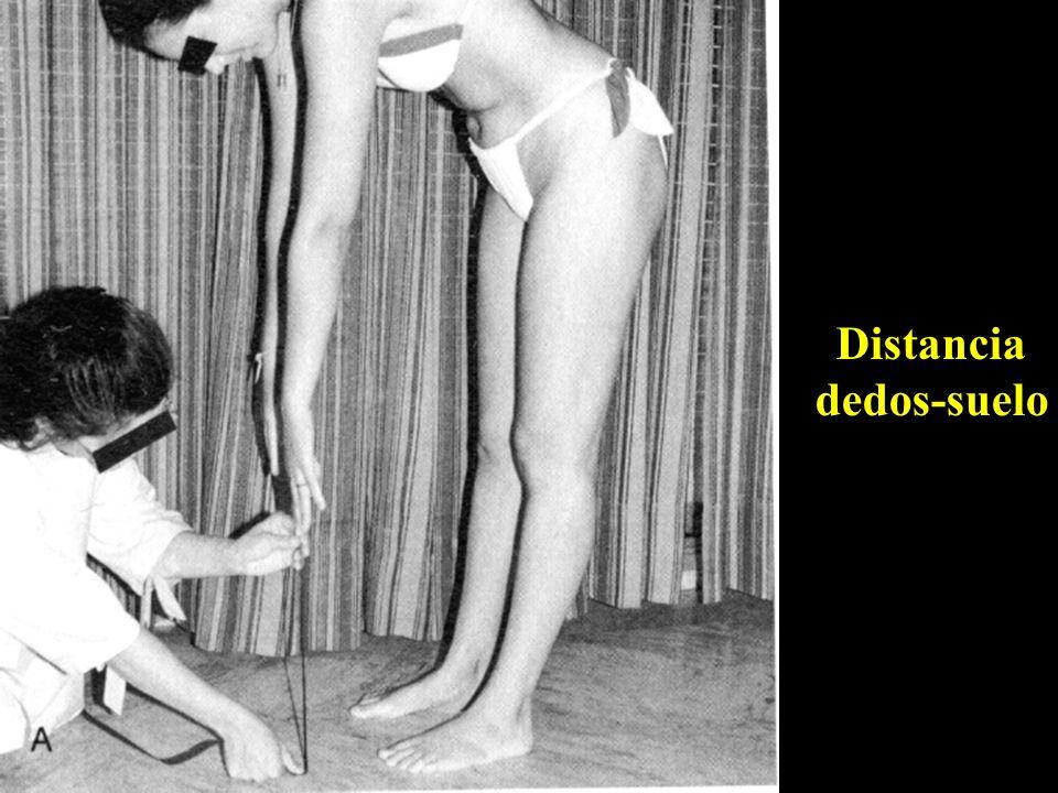 Distancia dedos-suelo