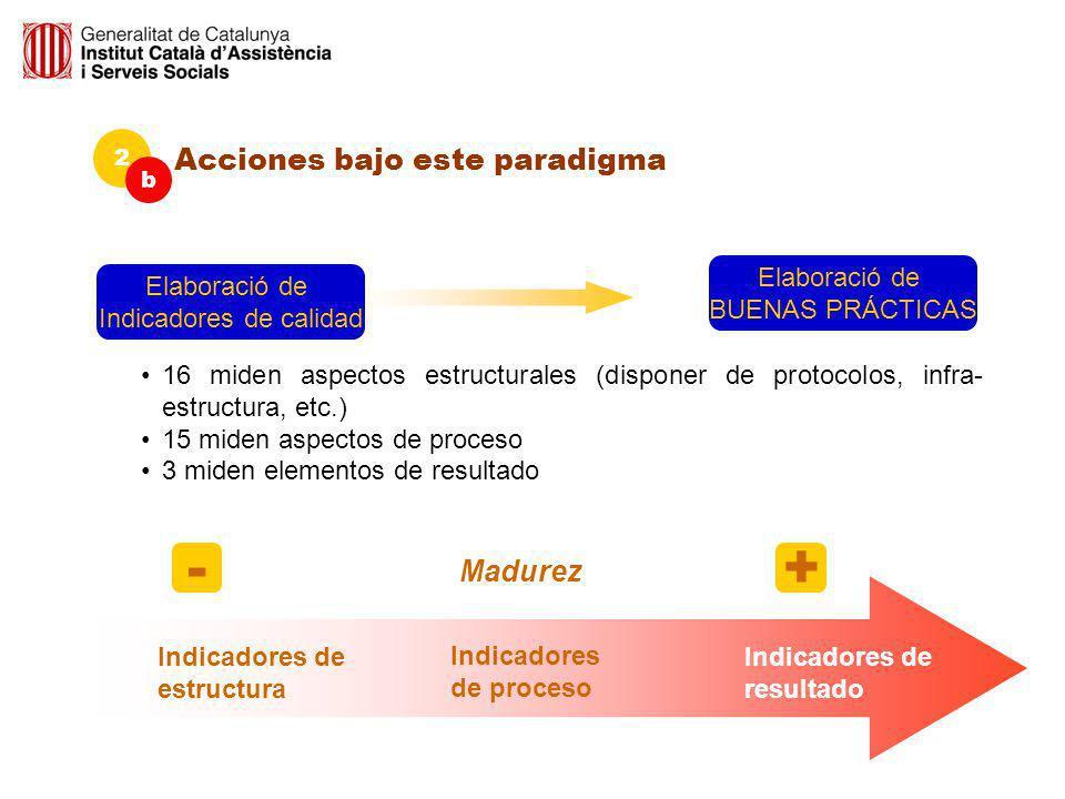 Acciones bajo este paradigma 2 b Indicadores 16 miden aspectos estructurales (disponer de protocolos, infra- estructura, etc.) 15 miden aspectos de pr