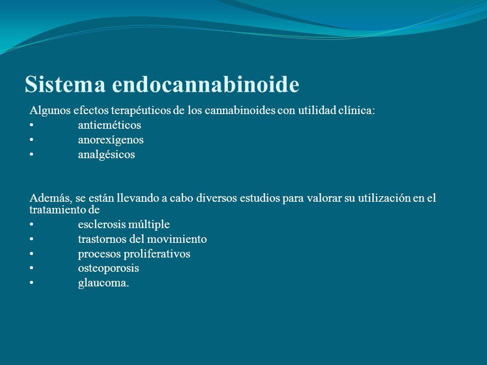 Sistema endocannabinoide Algunos efectos terapéuticos de los cannabinoides con utilidad clínica: antieméticos anorexígenos analgésicos Además, se está