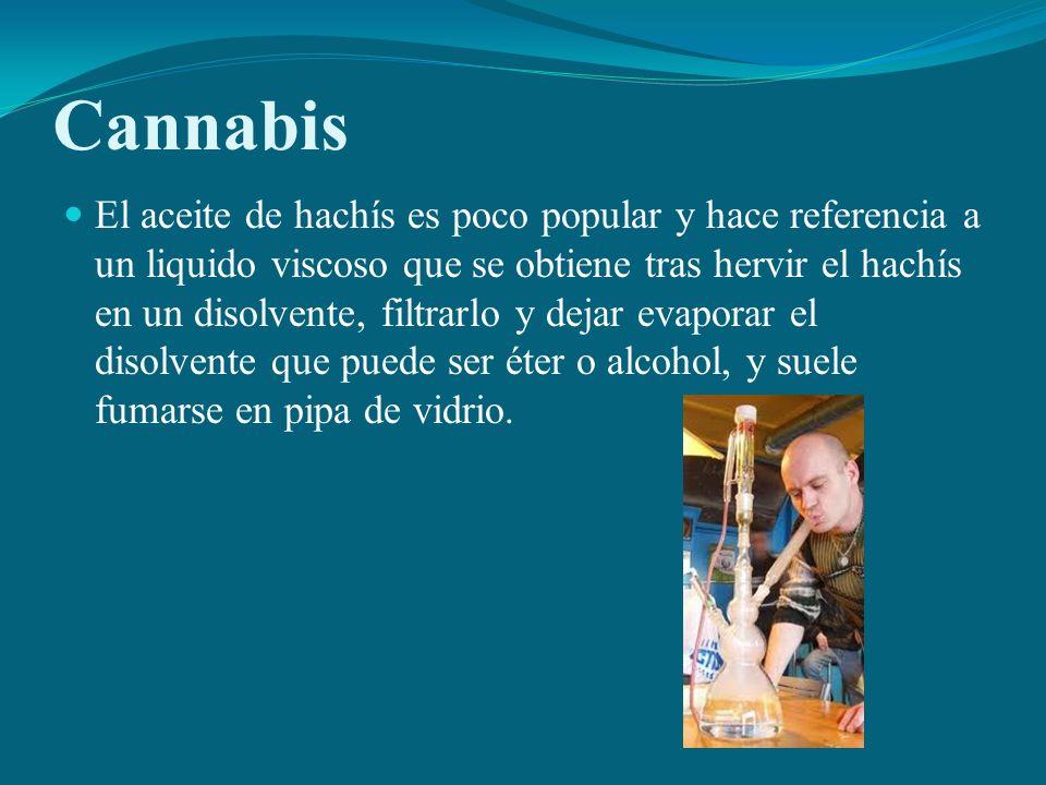 Cannabis El aceite de hachís es poco popular y hace referencia a un liquido viscoso que se obtiene tras hervir el hachís en un disolvente, filtrarlo y