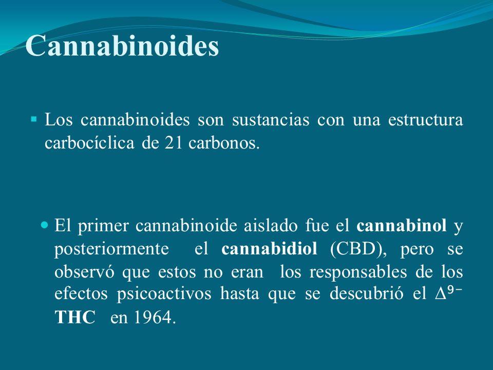 Los cannabinoides son sustancias con una estructura carbocíclica de 21 carbonos. El primer cannabinoide aislado fue el cannabinol y posteriormente el