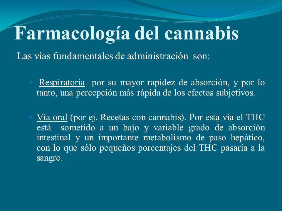 Farmacología del cannabis Las vías fundamentales de administración son: Respiratoria por su mayor rapidez de absorción, y por lo tanto, una percepción
