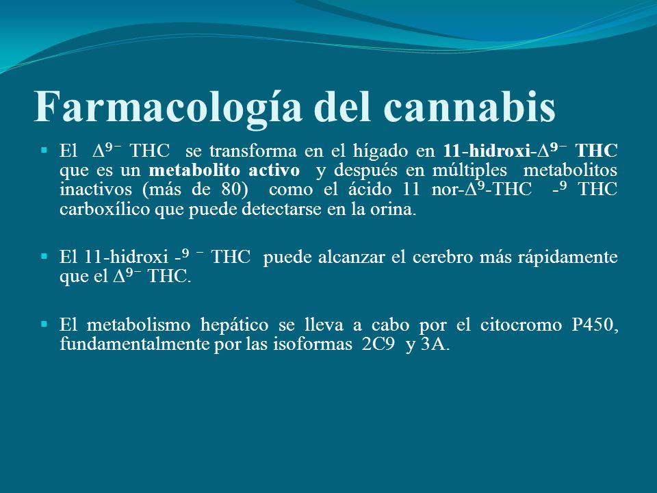 Farmacología del cannabis El THC se transforma en el hígado en 11-hidroxi- THC que es un metabolito activo y después en múltiples metabolitos inactivo