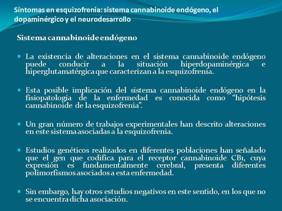 Síntomas en esquizofrenia: sistema cannabinoide endógeno, el dopaminérgico y el neurodesarrollo Sistema cannabinoide endógeno La existencia de alterac