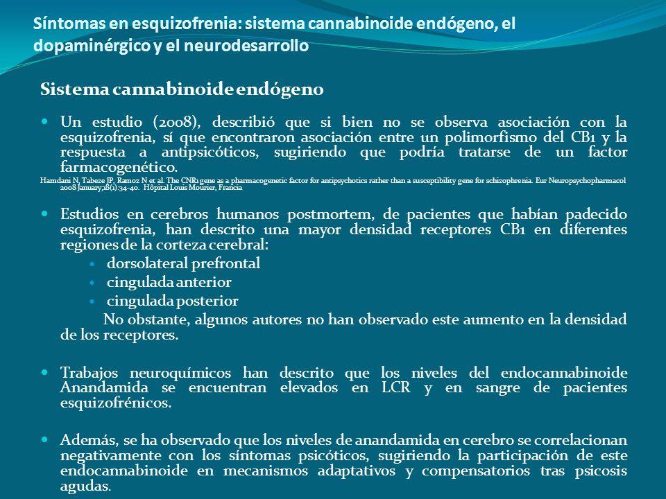 Síntomas en esquizofrenia: sistema cannabinoide endógeno, el dopaminérgico y el neurodesarrollo Sistema cannabinoide endógeno Un estudio (2008), descr