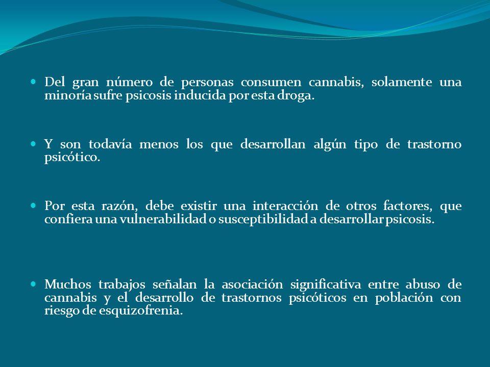 Hipótesis de la vulnerabilidad. Del gran número de personas consumen cannabis, solamente una minoría sufre psicosis inducida por esta droga. Y son tod