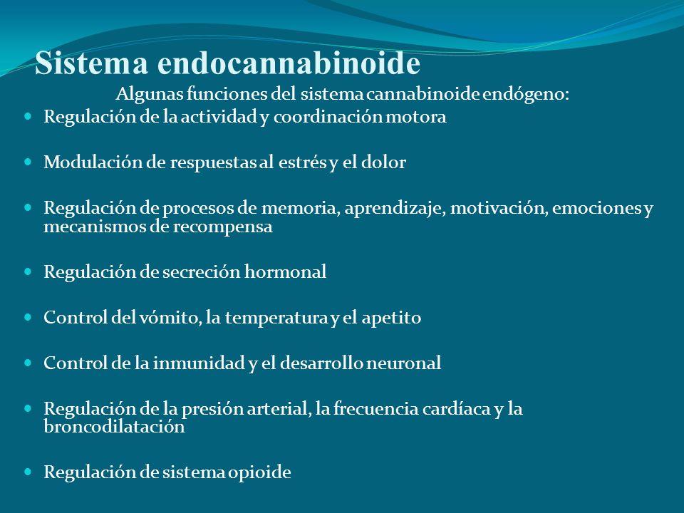 Sistema endocannabinoide Algunas funciones del sistema cannabinoide endógeno: Regulación de la actividad y coordinación motora Modulación de respuesta