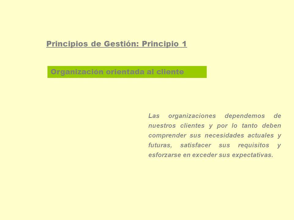 Enfoque basado en procesos Principios de Gestión: Principio 2 Un resultado deseado se alcanza más eficientemente cuando las actividades y los recursos relacionados se gestionan como un proceso.