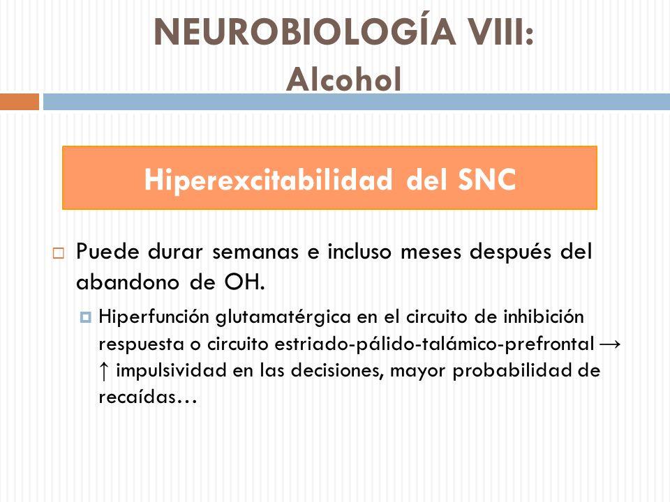 NEUROBIOLOGÍA VIII: Alcohol Puede durar semanas e incluso meses después del abandono de OH. Hiperfunción glutamatérgica en el circuito de inhibición r