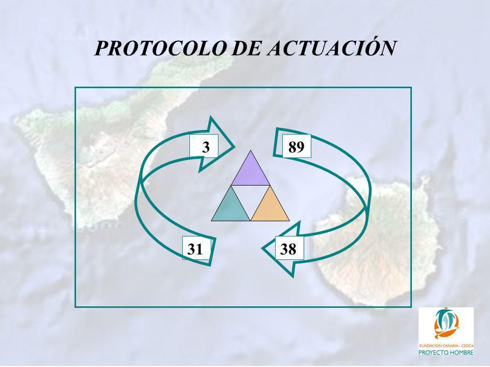 PROTOCOLO DE ACTUACIÓN 89 31 3 38