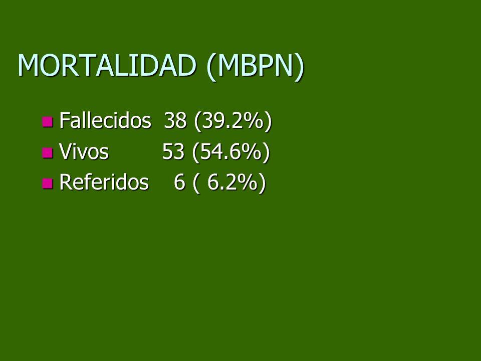MORTALIDAD (MBPN) Fallecidos 38 (39.2%) Fallecidos 38 (39.2%) Vivos 53 (54.6%) Vivos 53 (54.6%) Referidos 6 ( 6.2%) Referidos 6 ( 6.2%)