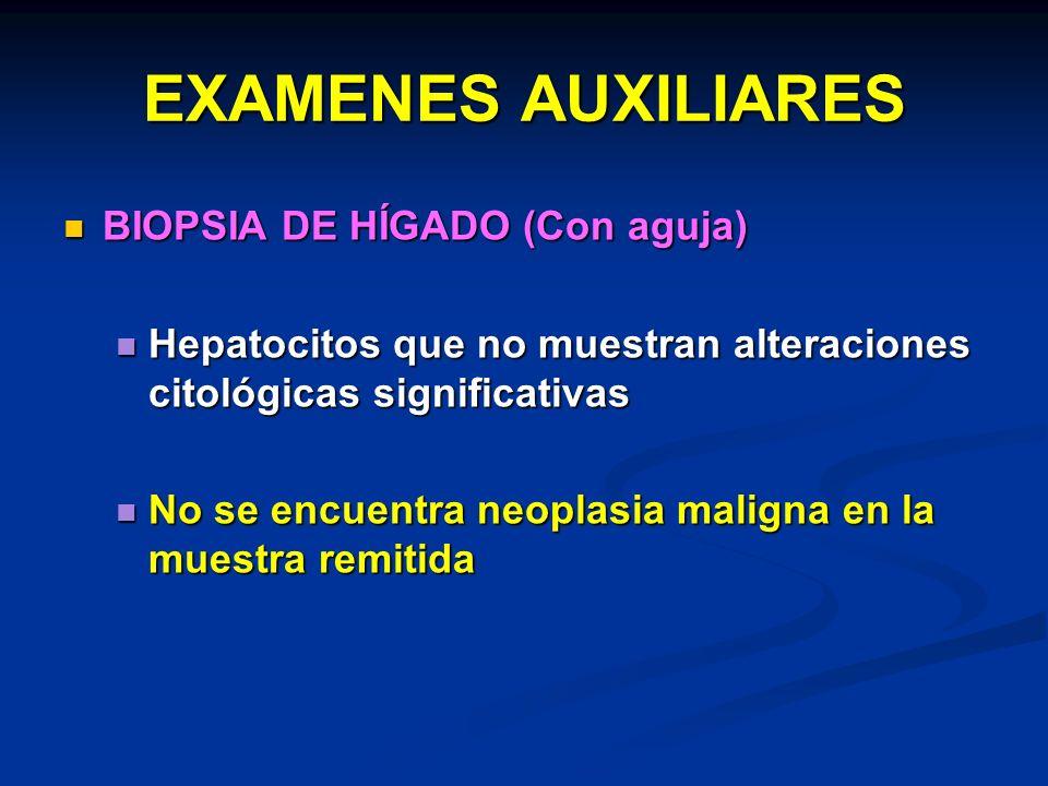 EXAMENES AUXILIARES BIOPSIA DE HÍGADO (Con aguja) BIOPSIA DE HÍGADO (Con aguja) Hepatocitos que no muestran alteraciones citológicas significativas He