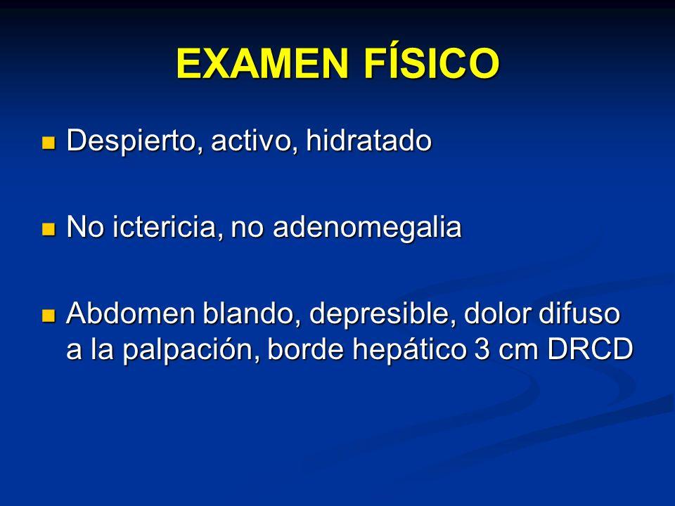 EXAMEN FÍSICO Despierto, activo, hidratado Despierto, activo, hidratado No ictericia, no adenomegalia No ictericia, no adenomegalia Abdomen blando, de