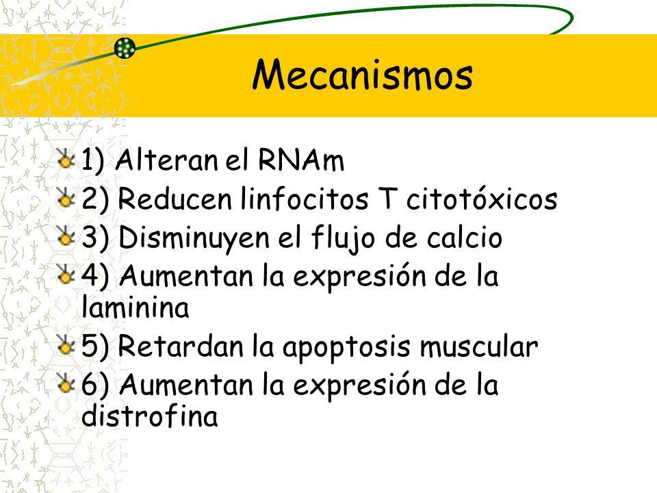 Distrofia de Duchenne Enfermedad recesiva, ligada al X Forma más común y severa de distrofia muscular. Deficiencia de distrofina. Pérdida de la marcha