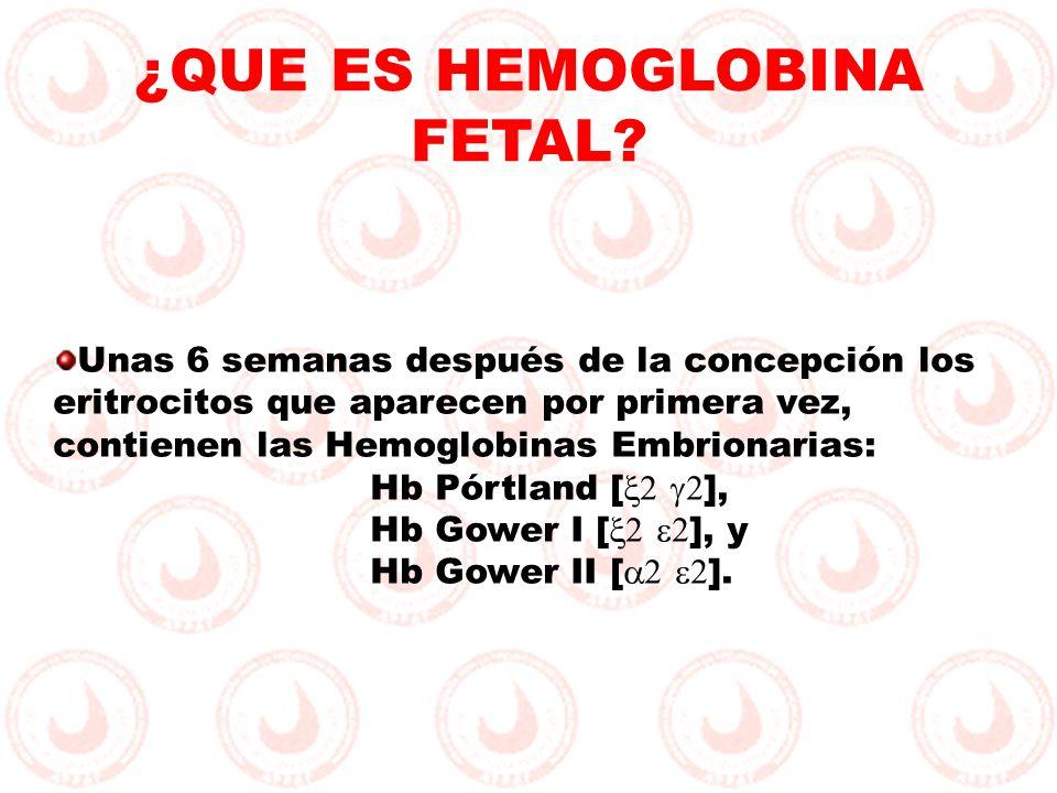 Unas 6 semanas después de la concepción los eritrocitos que aparecen por primera vez, contienen las Hemoglobinas Embrionarias: Hb Pórtland [ ], Hb Gow