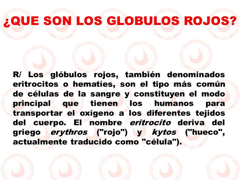 R/ Los glóbulos rojos, también denominados eritrocitos o hematíes, son el tipo más común de células de la sangre y constituyen el modo principal que t