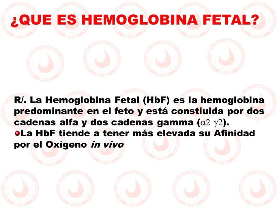 R/. La Hemoglobina Fetal (HbF) es la hemoglobina predominante en el feto y está constiuida por dos cadenas alfa y dos cadenas gamma ( ). La HbF tiende