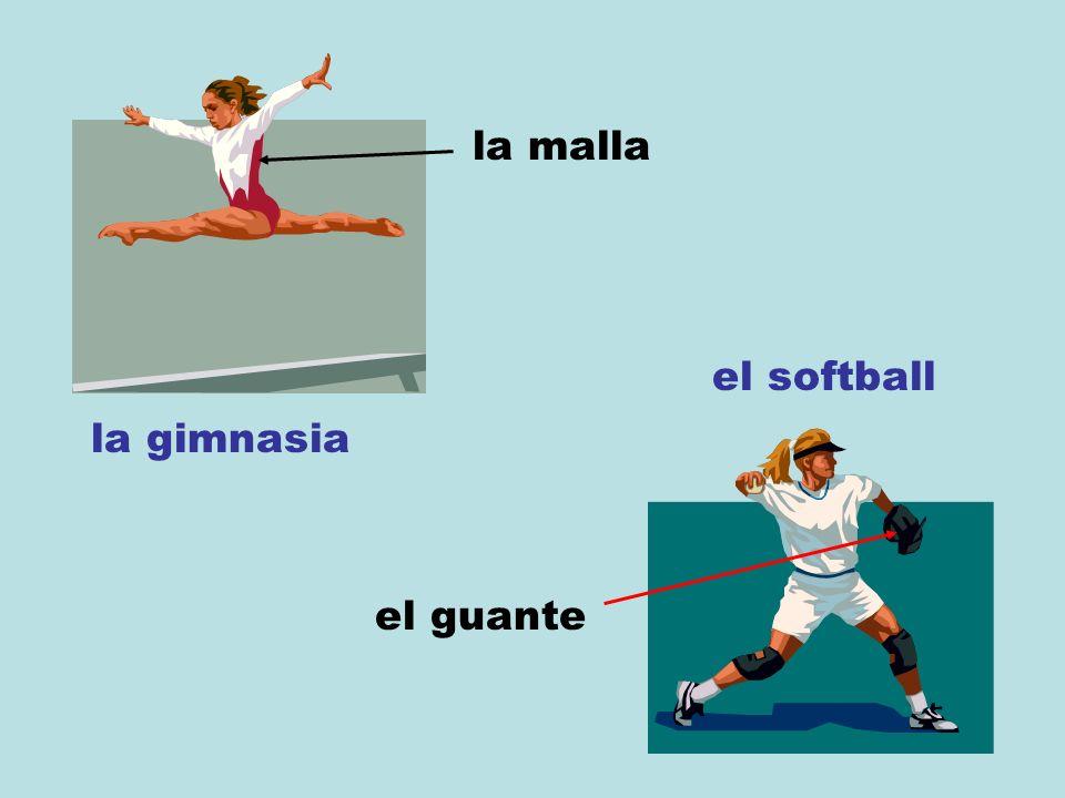 la gimnasia la malla el softball el guante