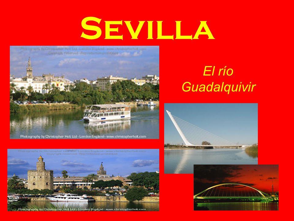 Sevilla La Torre de Oro La Plaza de España