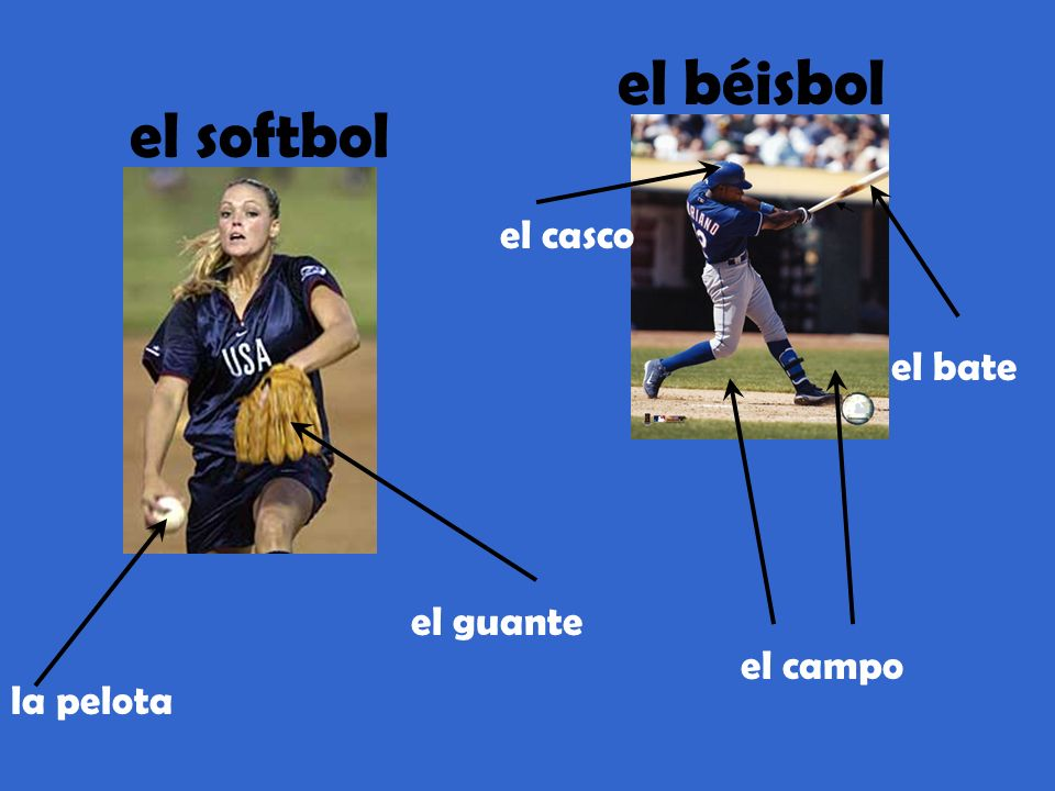 el softbol el béisbol el bate el campo la pelota el guante el casco