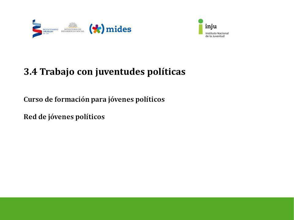 3.4 Trabajo con juventudes políticas Curso de formación para jóvenes políticos Red de jóvenes políticos