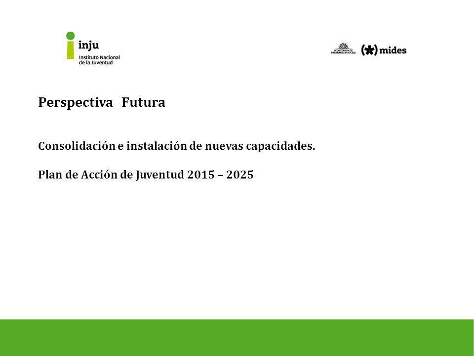 Perspectiva Futura Consolidación e instalación de nuevas capacidades.