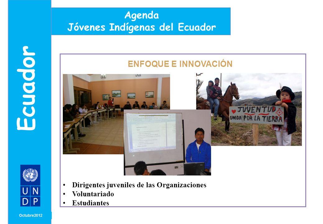 MONTH/ YEAR ENFOQUE E INNOVACIÓN Agenda Jóvenes Indígenas del Ecuador Dirigentes juveniles de las Organizaciones Voluntariado Estudiantes