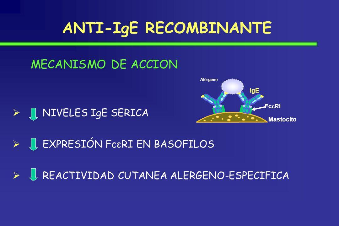 NIVELES IgE SERICA EXPRESIÓN FcεRI EN BASOFILOS REACTIVIDAD CUTANEA ALERGENO-ESPECIFICA Fc RI Alérgeno IgE Mastocito MECANISMO DE ACCION ANTI-IgE RECO