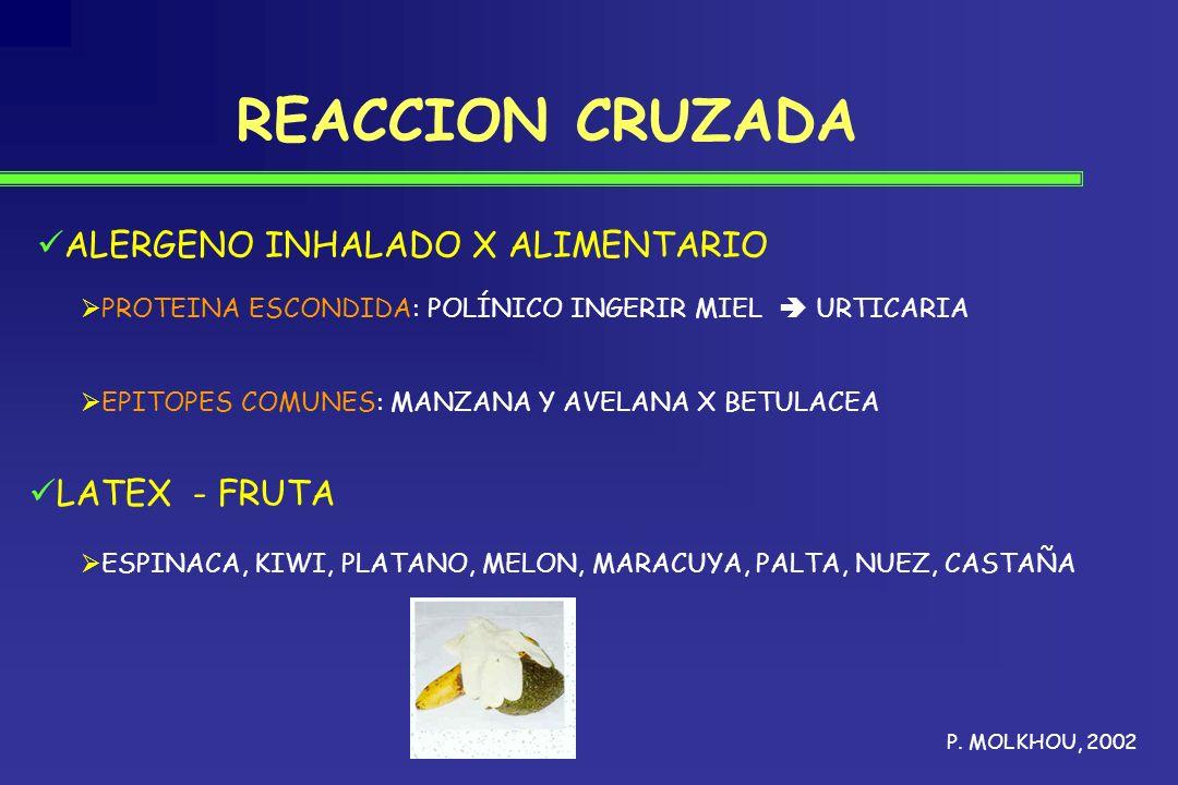 REACCION CRUZADA ALERGENO INHALADO X ALIMENTARIO LATEX - FRUTA ESPINACA, KIWI, PLATANO, MELON, MARACUYA, PALTA, NUEZ, CASTAÑA P. MOLKHOU, 2002 PROTEIN