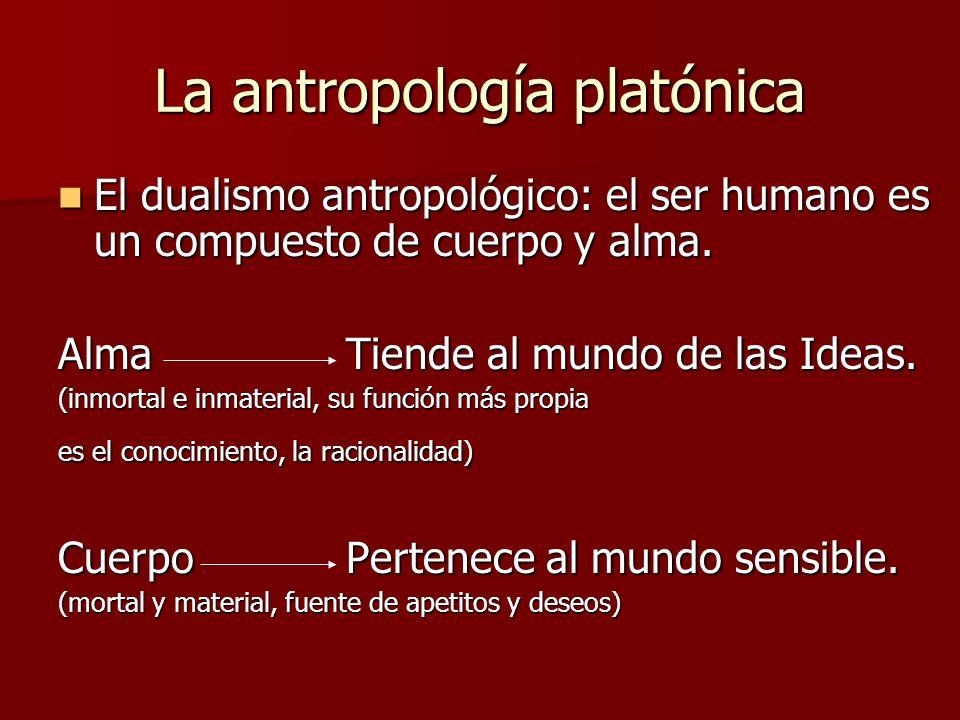La antropología platónica El dualismo antropológico: el ser humano es un compuesto de cuerpo y alma. El dualismo antropológico: el ser humano es un co