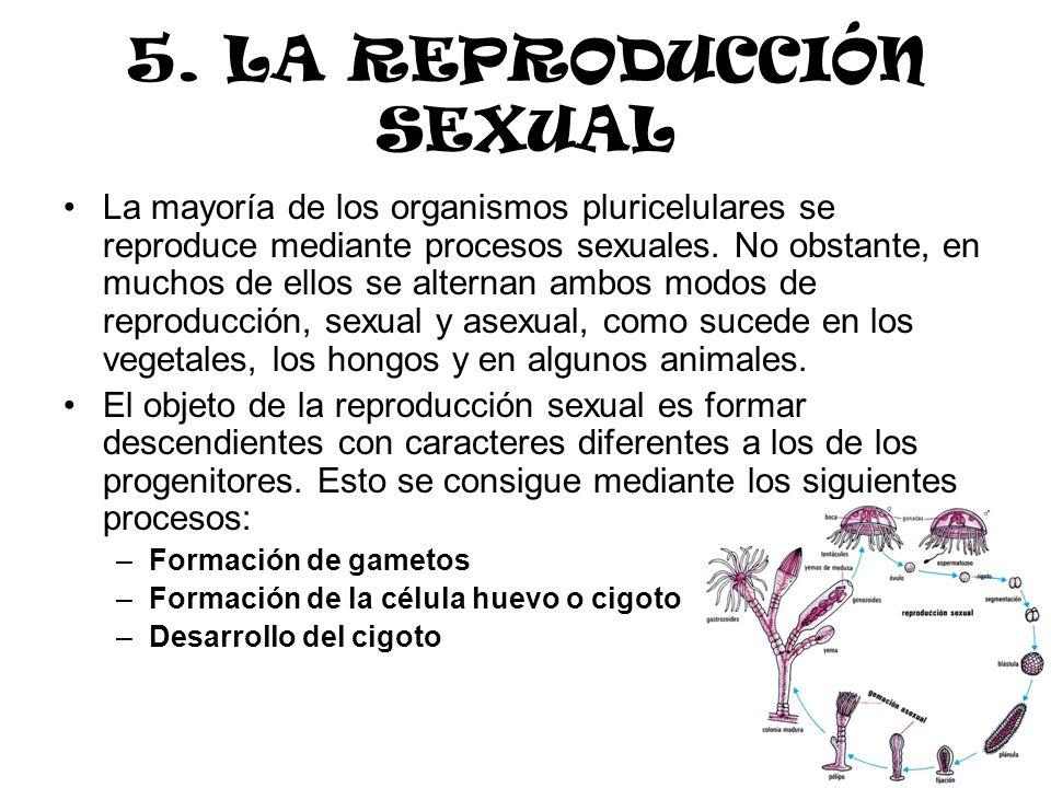 La mayoría de los organismos pluricelulares se reproduce mediante procesos sexuales. No obstante, en muchos de ellos se alternan ambos modos de reprod
