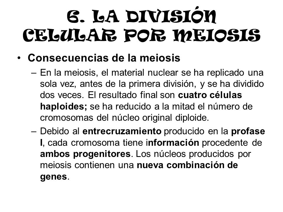 6. LA DIVISIÓN CELULAR POR MEIOSIS Consecuencias de la meiosis –En la meiosis, el material nuclear se ha replicado una sola vez, antes de la primera d