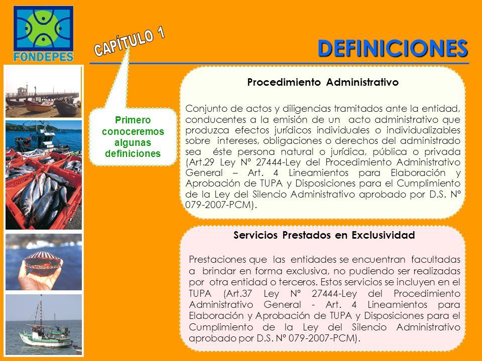 DEFINICIONES Servicios Prestados en Exclusividad Prestaciones que las entidades se encuentran facultadas a brindar en forma exclusiva, no pudiendo ser