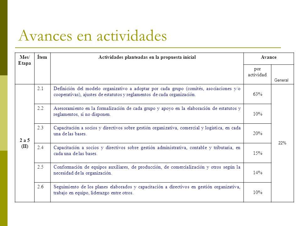 Avances en actividades Mes/ Etapa ÍtemActividades planteadas en la propuesta inicialAvance por actividad General 2 a 5 (II) 2.1Definición del modelo o
