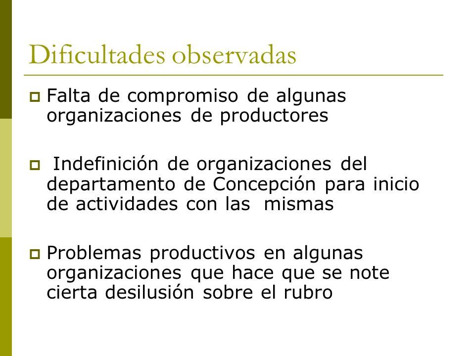 Dificultades observadas Falta de compromiso de algunas organizaciones de productores Indefinición de organizaciones del departamento de Concepción par