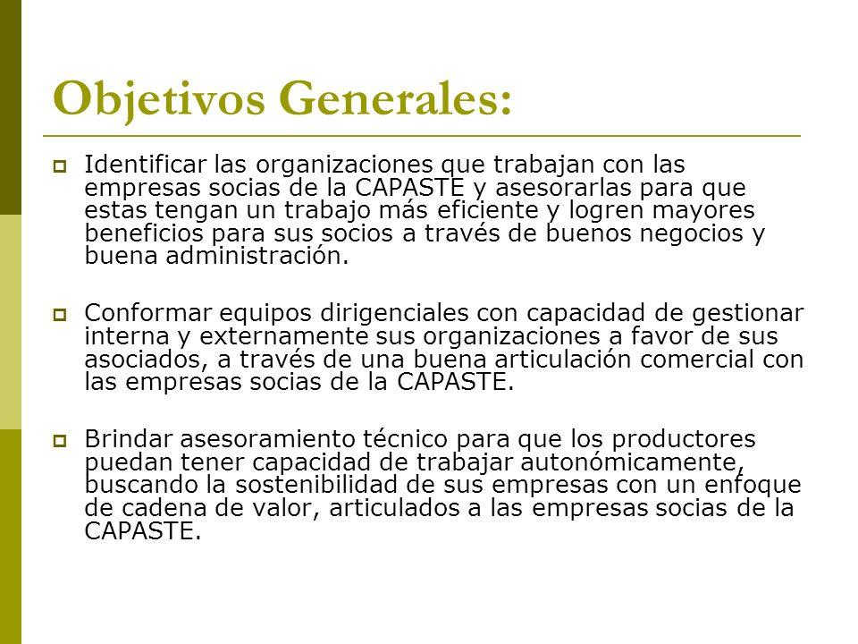 Objetivos Generales: Identificar las organizaciones que trabajan con las empresas socias de la CAPASTE y asesorarlas para que estas tengan un trabajo
