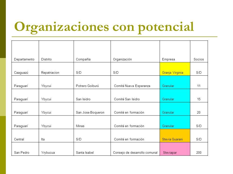 Organizaciones con potencial DepartamentoDistritoCompañíaOrganizaciónEmpresaSocios CaaguazúRepatriacionS/D Granja VirginiaS/D ParaguaríYbycuiPotrero G