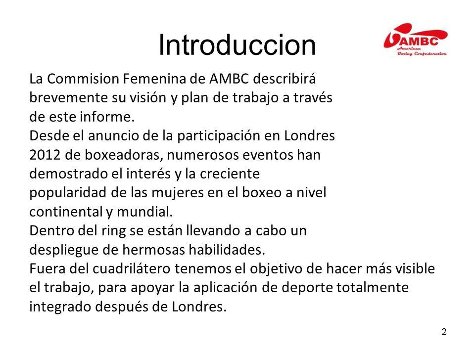 2 Introduccion La Commision Femenina de AMBC describirá brevemente su visión y plan de trabajo a través de este informe. Desde el anuncio de la partic